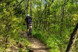 Mountain Biking in Dumfries and Galloway